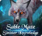 Sable Maze: Sinister Knowledge 游戏