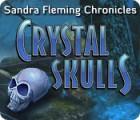 Sandra Fleming Chronicles: The Crystal Skulls 游戏