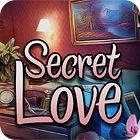 Secret Love 游戏