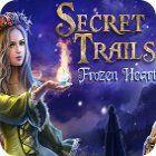 Secret Trails: Frozen Heart 游戏