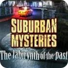Suburban Mysteries: The Labyrinth of The Past 游戏
