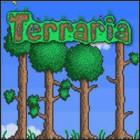 Terraria 游戏