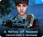 The Andersen Accounts: A Voice of Reason Collector's Edition 游戏