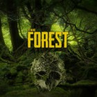 The Forest 游戏