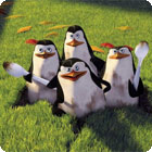 The Penguins of Madagascar: Pollution Solution 游戏