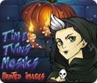 Time Twins Mosaics Haunted Images 游戏