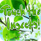 Touch the Insects 游戏