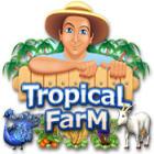 Tropical Farm 游戏