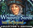 Whispered Secrets: Into the Beyond Collector's Edition 游戏