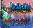 Winter in New York Mosaic Edition 游戏