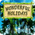 Wonderful Holidays 游戏