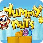 Yummy Nuts 游戏