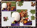 免费下载屏幕 Holiday Jigsaw: Halloween 1